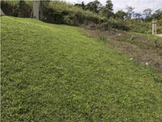 Sector Colinas Verde
