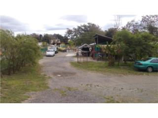 Carr 102 Km 38.5 Bo. Minillas, San Germán