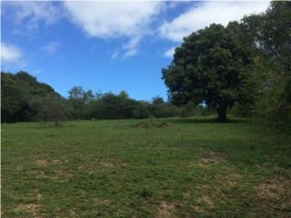 VIEQUES - PRIVATE LOT - Puerto Real Ward