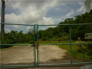 Finca de Caguas Real, Home Resort