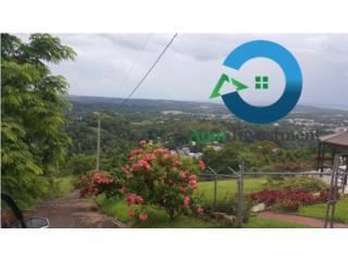 Con vista panaorámica, 19,339 m2, Mayaguez