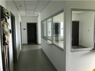 HIMA Plaza One - remodeled medical office.