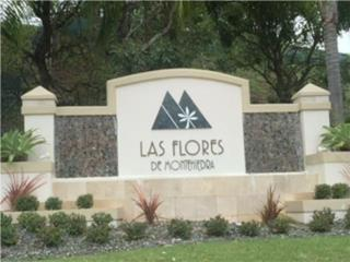 Las Flores De Montehiedra, San Juan