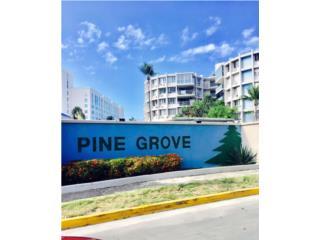Cond Pine Grove en Isla Verde