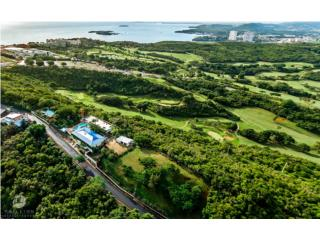 Ocean & Golf Treasure, Fajardo, 8-7.5