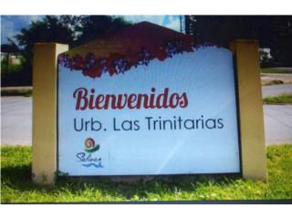 Urb. Las Trinatarias