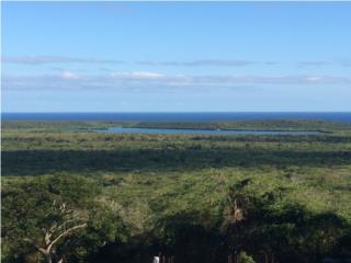 VIEQUES - Los Chivos - One of the best views
