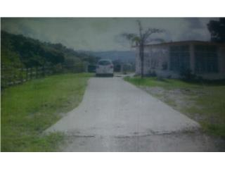 FINCA 11 cdas. con Casa en San Lorenzo