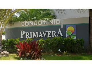 CONDO. PRIMAVERA//HAZ TU OFERTA!!!