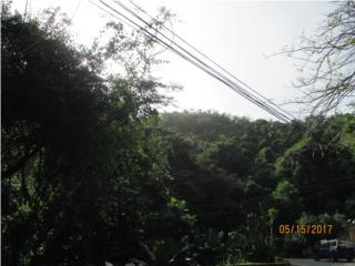 Urb. Alturas de Caguas