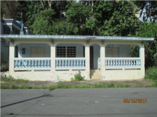 Com. Borinquen 408 Calle Zafiro