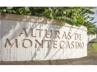 ALTURAS DE MONTECASINO