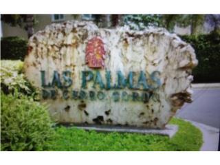 Las Palmas de Cerro Gordo 4h. 2.5b $195K
