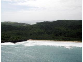 Culebra, Playa Brava, Tres fincas