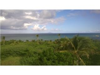 Bahia del Sur - Lot with Boatslip (reduced)