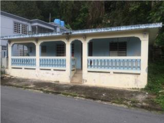 Casa, Com. Borinquen 408 Calle Zafiro