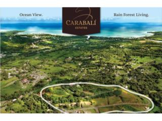 Carabali Estates, Luquillo, 5 Lots Available!