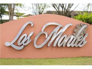 URB. LOS MONTES, DORADO