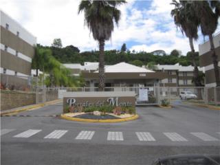 Portales del Monte (penthouse)