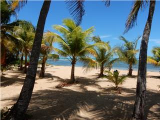 Punta Bandera - Beach Apartment - 3 parkings