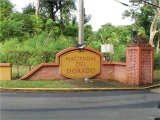 Haciendas de Dorado - Pronto a la Venta