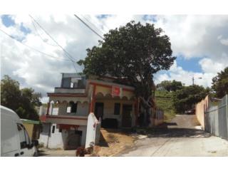 BO CIENAGA, CARR 119 KM 8.9, SECT PALOMAR