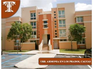 ARMONIA EN LOS PRADOS//DISPONIBLE//100% FHA