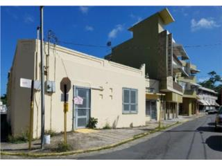 Calle Guarionex San Juan - Hato Rey