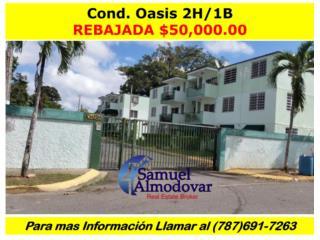 Cond. Oasis, REBAJADA FINANCIAMIENTO DISPONIBLE!!