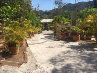 Hacienda El Tamarindo Carr.150-98K
