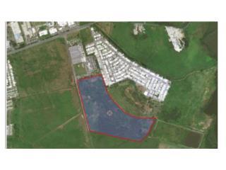 51 cuerdas, flat land, ideal for solar farm