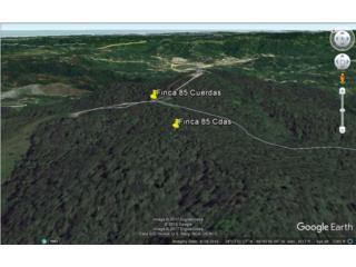 Finca 85 Cuerdas Cerro Roncador, Utuado