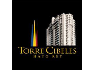 TORRE CIBELES-VARIOS