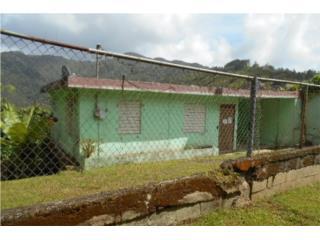 Barrio Borinquen Caguas