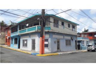 Local Comercial con Ingresos