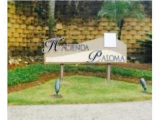 Casa, Hacienda Paloma, 4H,4B RORI