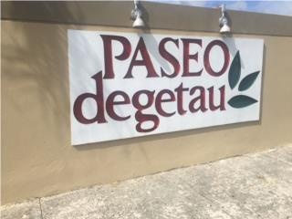 Paseo Degetau, Caguas - SHORT SALE