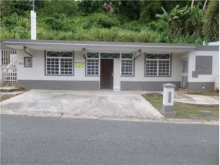 Azucena St 297 Caguas, PR, 00725