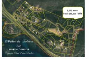 Espectacular Vista Mar Caribe 5070 Mts $85K