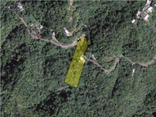 Ext. Villas de Monte Verde H-12