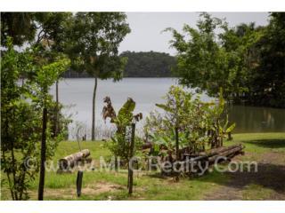 Casita en el Campo Frente al Lago Guajataca