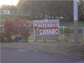 Hacienda del Cayabo Solar 2,874 MT2