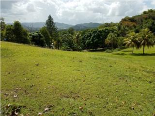 Precioso Terreno con Vista 999 m/c