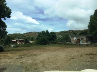 Terreno en Bo Susúa Alta sector La Palmita Yauco
