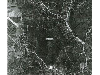 Carr 378 km 4.4 Bo Sierra Baja (7)