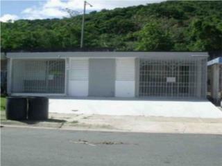 Villa Tolima, Caguas, Casa