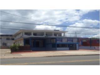 Local Comercial, Bo. Hato Abajo, 450K