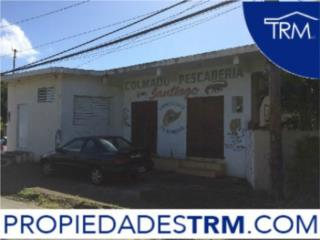 101 A Calle 5 Comunidad Luis M. Cintrón, Faja