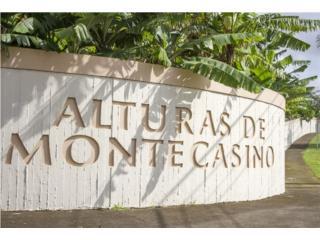 URB. ALTURAS DE MONTECASINO