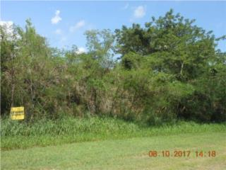 Lot#4 locate at East marginal Street Rooad